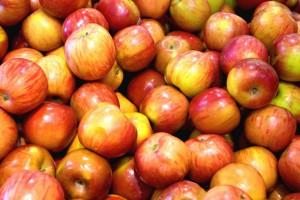 pommes-saverdun-Larlenque