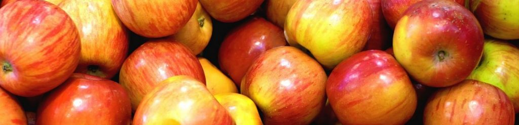 pommes-bio-vente-directe-saverdun