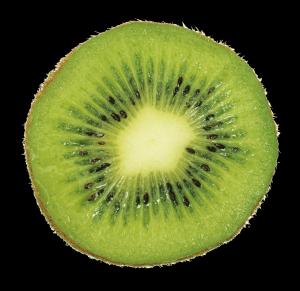 tranche-kiwi-ariege