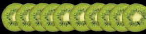 verger-Larlenque kiwi b